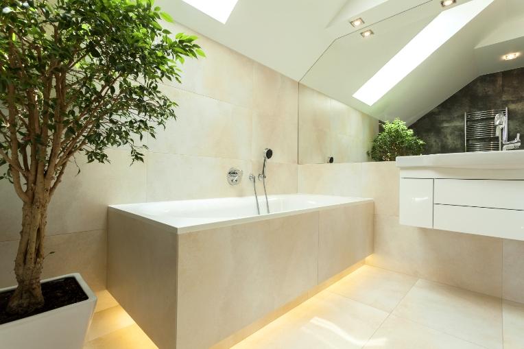 beberapa jenis tanaman yang cocok di kamar mandi. Black Bedroom Furniture Sets. Home Design Ideas